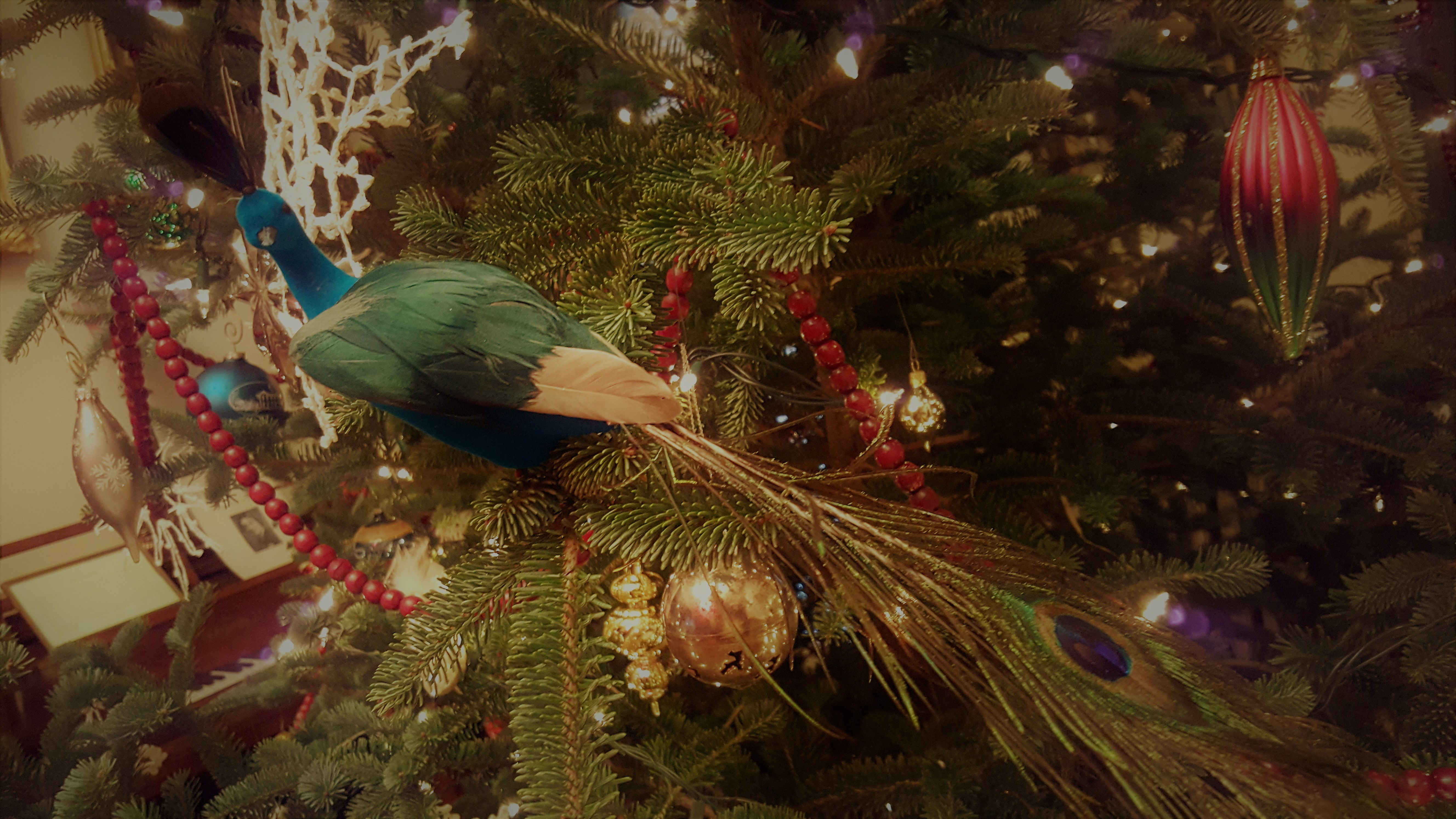ornament002
